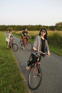 河之夏自行车