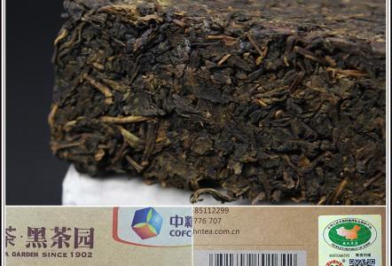 中茶黑茶园茶叶